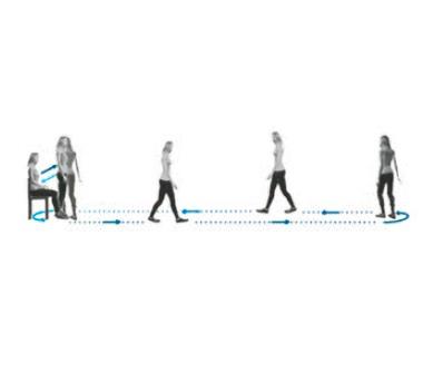 BTS G-Walk sensor Software   BORGinsole